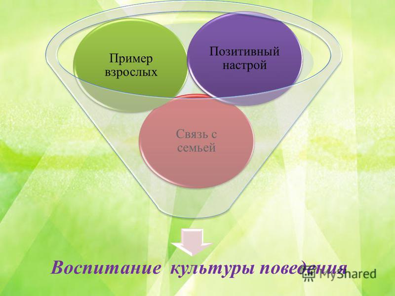 Воспитание культуры поведения Связь с семьей Пример взрослых Позитивный настрой
