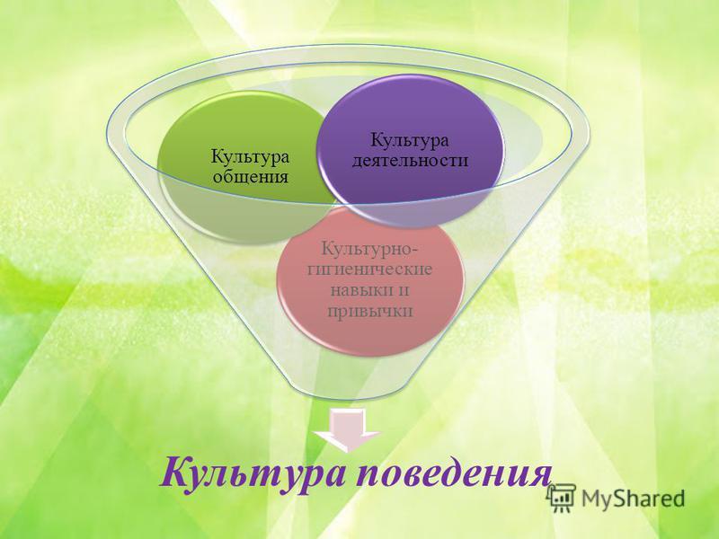Культура поведения Культурно- гигиенические навыки и привычки Культура общения Культура деятельности