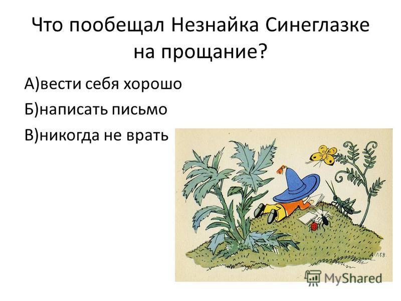 Что пообещал Незнайка Синеглазке на прощание? А)вести себя хорошо Б)написать письмо В)никогда не врать