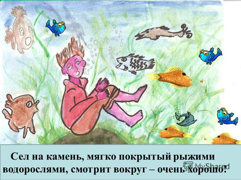Сел на камень, мягко покрытый рыжими водорослями, смотрит вокруг – очень хорошо!