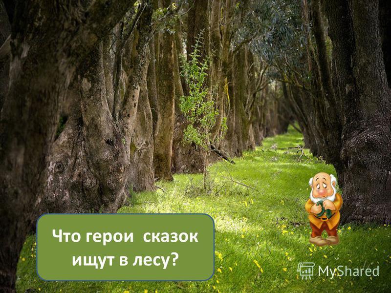 Что герои сказок ищут в лесу?