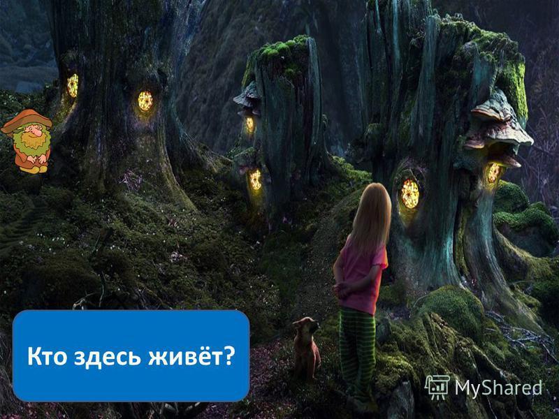 Кто здесь живёт?