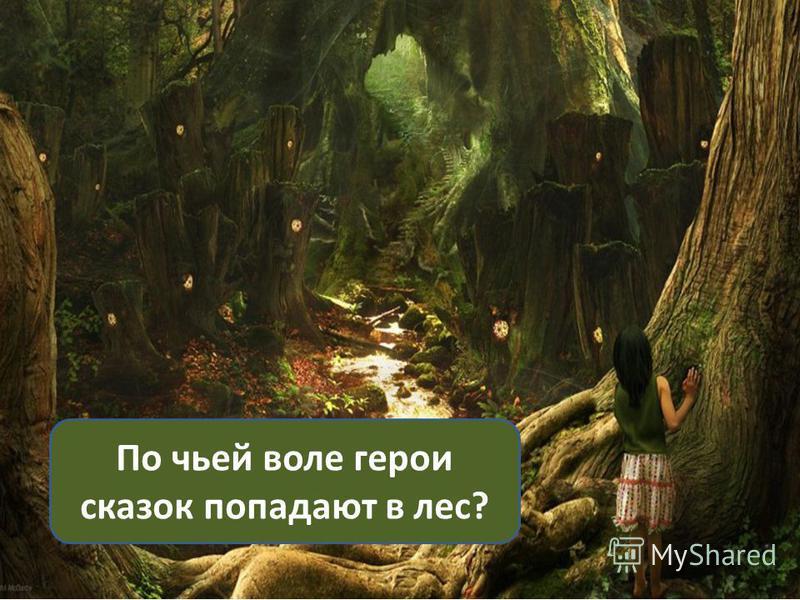По чьей воле герои сказок попадают в лес?
