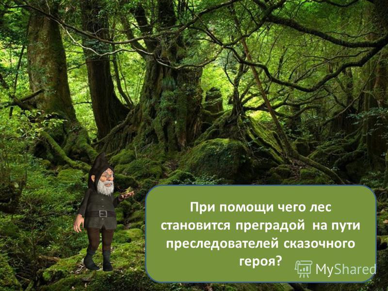 При помощи чего лес становится преградой на пути преследователей сказочного героя?
