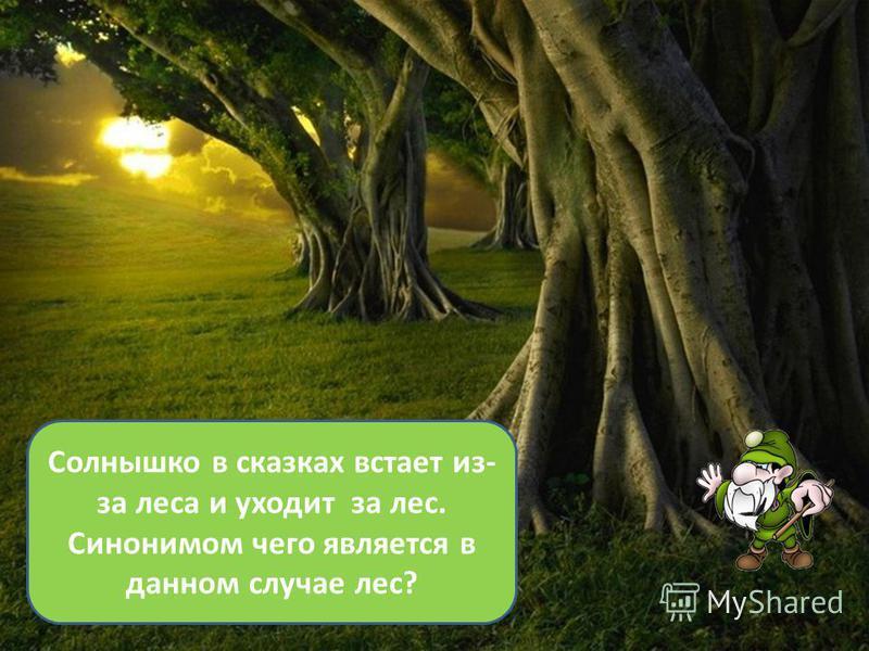 Солнышко в сказках встает из- за леса и уходит за лес. Синонимом чего является в данном случае лес?