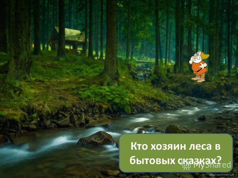 Кто хозяин леса в бытовых сказках?