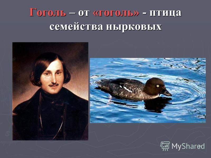 Гоголь – от «гоголь» - птица семейства нырковых 21