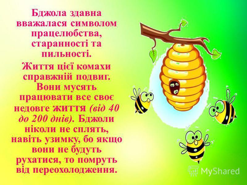 Бджола здавна вважалася символом працелюбства, старанності та пильності. Життя цієї комахи справжній подвиг. Вони мусять працювати все своє недовге життя (від 40 до 200 днів). Бджоли ніколи не сплять, навіть узимку, бо якщо вони не будуть рухатися, т