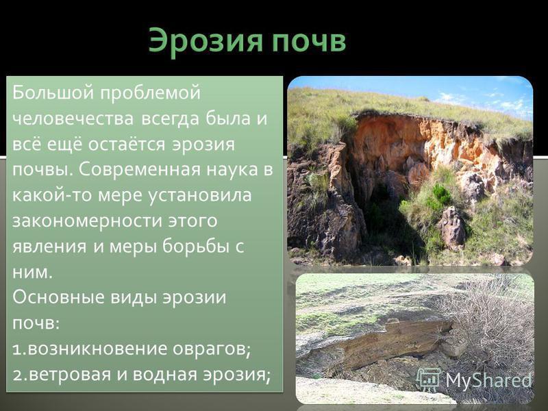 Большой проблемой человечества всегда была и всё ещё остаётся эрозия почвы. Современная наука в какой-то мере установила закономерности этого явления и меры борьбы с ним. Основные виды эрозии почв: 1. возникновение оврагов; 2. ветровая и водная эрози
