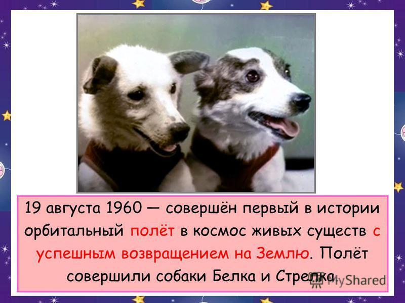 19 августа 1960 совершён первый в истории орбитальный полёт в космос живых существ с успешным возвращением на Землю. Полёт совершили собаки Белка и Стрелка.