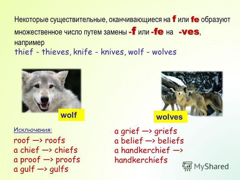 fe f fe - ves Некоторые существительные, оканчивающиеся на f или fe образуют множественное число путем замены - f или - fe на - ves, например thief - thieves, knife - knives, wolf - wolves wolf wolves Исключения: roof > roofs a chief > chiefs a proof
