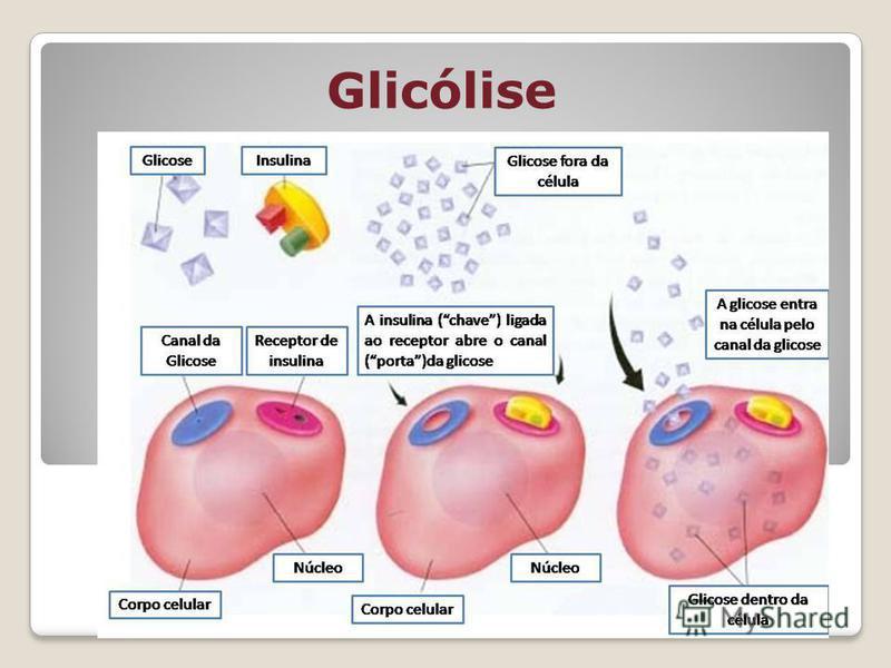 Glicólise