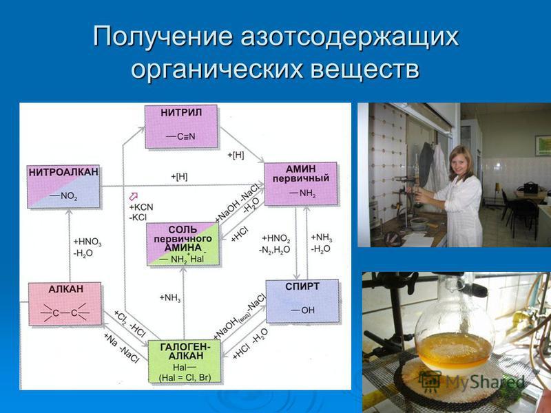 Получение азотсодержащих органических веществ