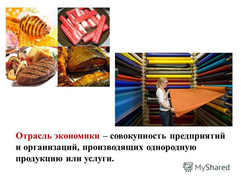 Отрасль экономики – совокупность предприятий и организаций, производящих однородную продукцию или услуги.