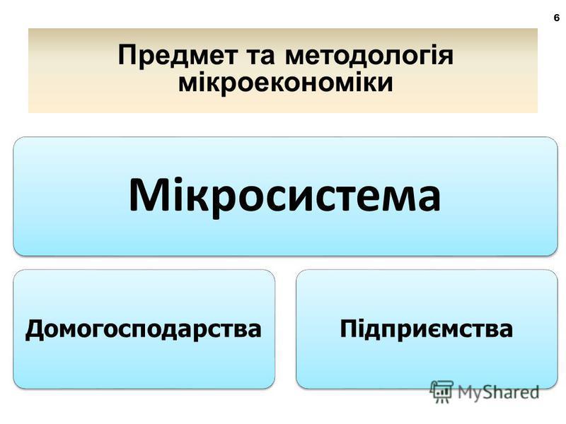 6 Мікросистема ДомогосподарстваПідприємства