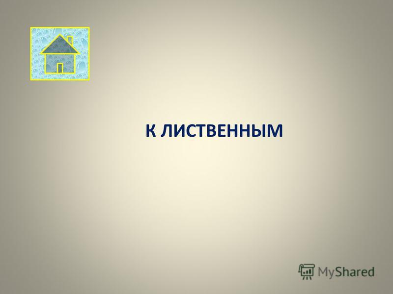 К ЛИСТВЕННЫМ