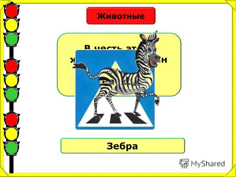 Животные В честь этого животного назван пешеходный переход. Зебра