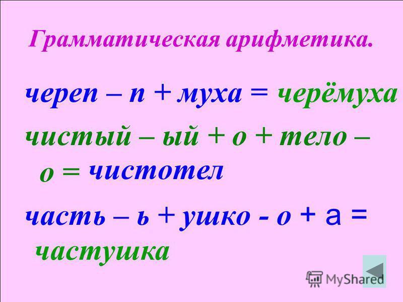 Грамматическая арифметика. череп – п + муха = чистый – ый + о + тело – о = часть – ь + ушко - о + а = черёмуха чистотел частушка