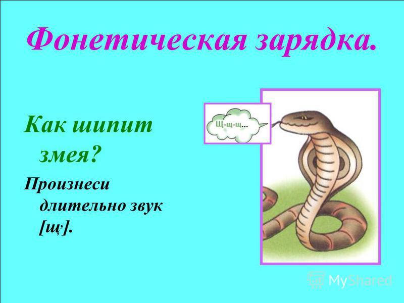 Фонетическая зарядка. Как шипит змея? Произнеси длительно звук [щ, ].