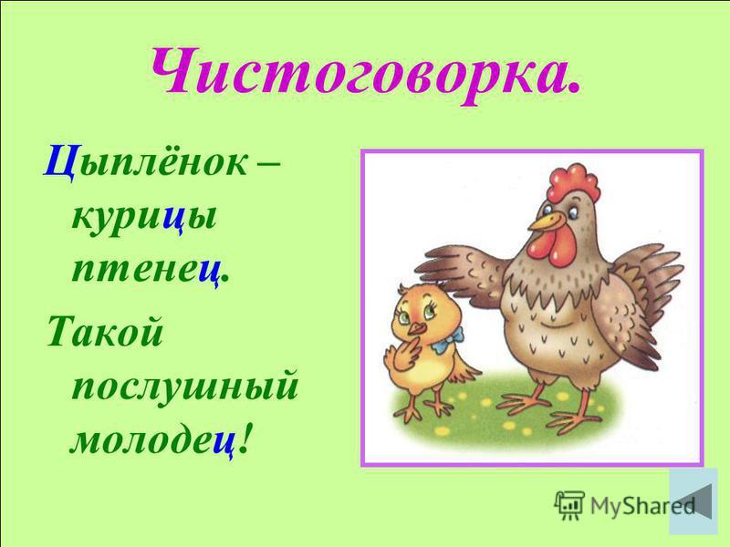 Чистоговорка. Цыплёнок – курицы птенец. Такой послушный молодец!