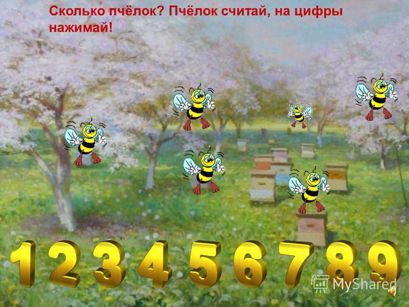 «Весёлые пчёлки»