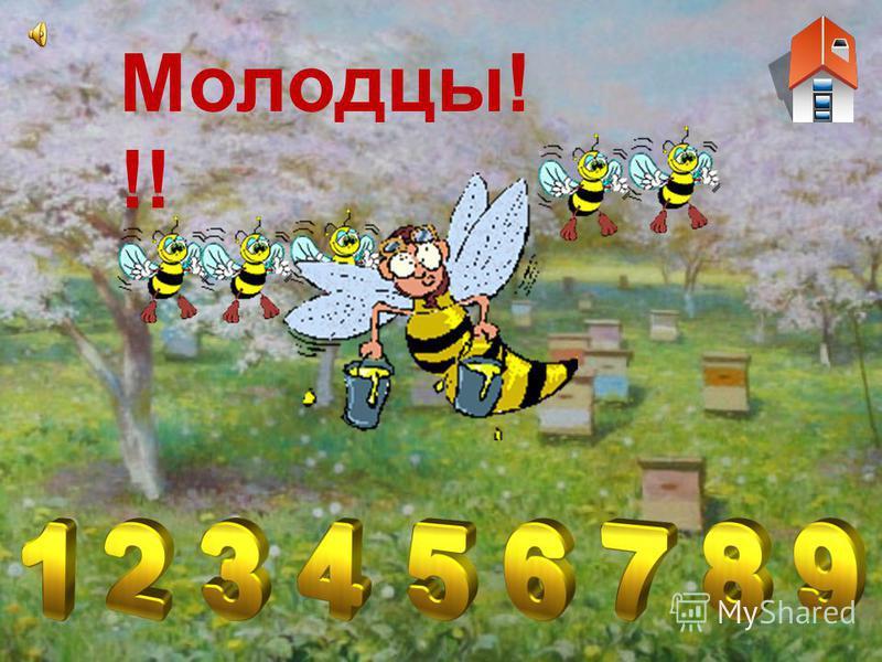 Сколько пчёлок? Пчёлок считай, на цифры нажимай! Молодец, умеешь считать! А нам пора медок собирать!