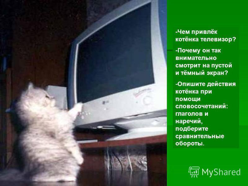 -Чем привлёк котёнка телевизор? -Почему он так внимательно смотрит на пустой и тёмный экран? -Опишите действия котёнка при помощи словосочетаний: глаголов и наречий, подберите сравнительные обороты.