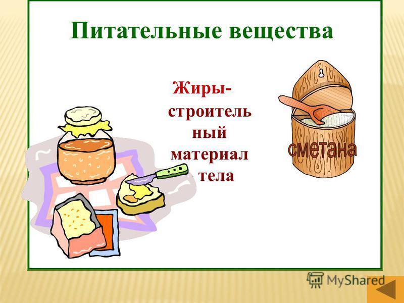 Питательные вещества Жиры- строительный материал » тела