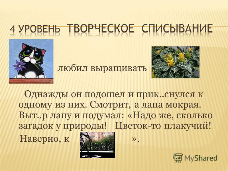 любил выращивать Однажды он подошел и прик..снялся к одному из них. Смотрит, а лапа мокрая. Выт..р лапу и подумал: «Надо же, сколько загадок у природы! Цветок-то плакучий! Наверно, к ».