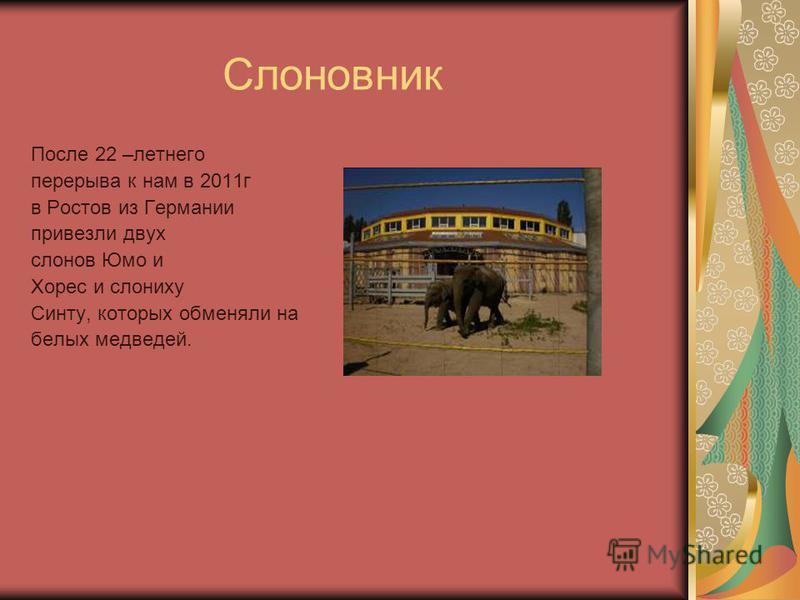 Слоновник После 22 –летнего перерыва к нам в 2011 г в Ростов из Германии привезли двух слонов Юмо и Хорес и слониху Синту, которых обменяли на белых медведей.