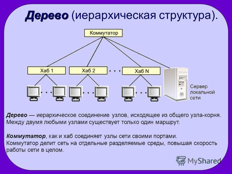 Дерево Дерево (иерархическая структура). Дерево иерархическое соединение узлов, исходящее из общего узла-корня. Между двумя любыми узлами существует только один маршрут. Коммутатор, как и хаб соединяет узлы сети своими портами. Коммутатор делит сеть