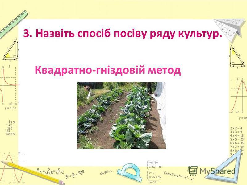 3. Назвіть спосіб посіву ряду культур. Квадратно-гнiздовiй метод
