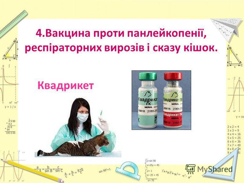 4.Вакцина проти панлейкопенії, респіраторних вирозів і сказу кішок. Квадрикет