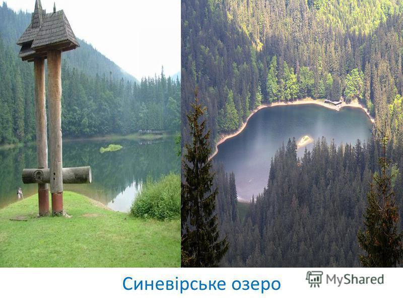 Синевірське озеро