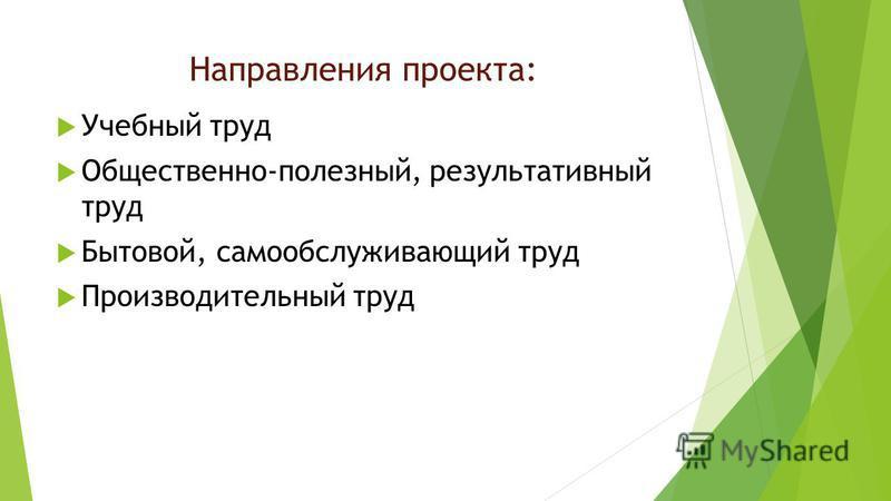 Направления проекта: Учебный труд Общественно-полезный, результативный труд Бытовой, самообслуживающий труд Производительный труд