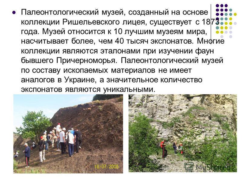Широко представлен палеоботанический отдел музея. В нём экспонируются каменноугольная флора Донбасса и неогеновая флора Украины и Молдовы. Лес каменноугольного периода