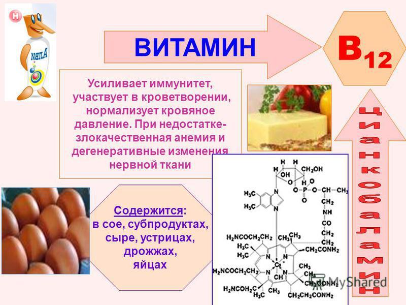 ВИТАМИН B 12 Усиливает иммунитет, участвует в кроветворении, нормализует кровяное давление. При недостатке- злокачественная анемия и дегенеративные изменения нервной ткани Содержится: в сое, субпродуктах, сыре, устрицах, дрожжах, яйцах