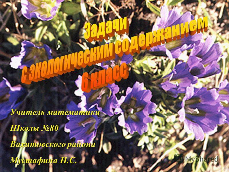 Учитель математики Школы 80 Вахитовского района Мустафина Н.С.