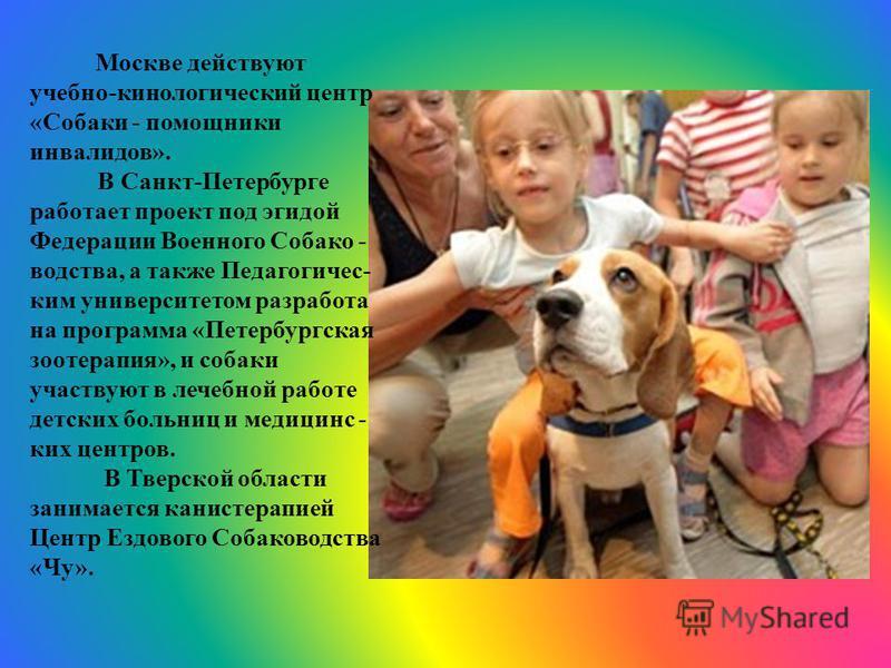 Москве действуют учебно-кинологический центр «Собаки - помощники инвалидов». В Санкт-Петербурге работает проект под эгидой Федерации Военного Собако - водства, а также Педагогичес- ким университетом разработана программа «Петербургская зоотерапия», и