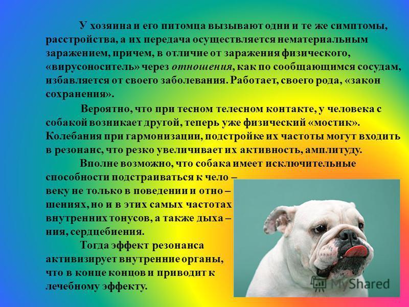 Вероятно, что при тесном телесном контакте, у человека с собакой возникает другой, теперь уже физический «мостик». Колебания при гармонизации, подстройке их частоты могут входить в резонанс, что резко увеличивает их активность, амплитуду. Вполне возм