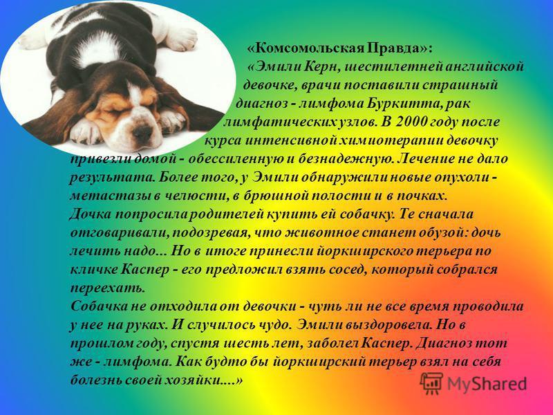 «Комсомольская Правда»: «Эмили Керн, шестилетней английской девочке, врачи поставили страшный диагноз - лимфома Буркитта, рак лимфатических узлов. В 2000 году после курса интенсивной химиотерапии девочку привезли домой - обессиленную и безнадежную. Л