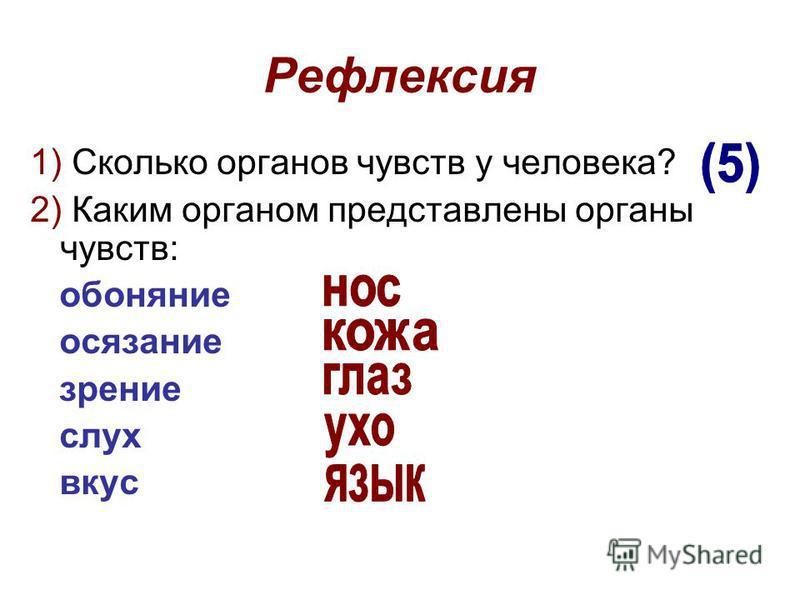 Рефлексия 1) Сколько органов чувств у человека? 2) Каким органом представлены органы чувств: обоняние осязание зрение слух вкус