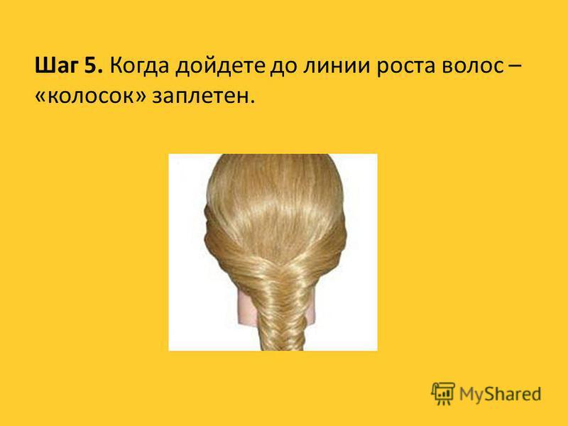 Шаг 5. Когда дойдете до линии роста волос – «колосок» заплетен.