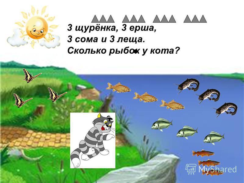 3 щурёнка, 3 ерша, 3 сома и 3 леща. Сколько рыбок у кота?