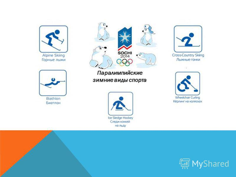 Биатлон Бобслей Санный спорт Конькобежный спорт Лыжный спорт Кёрлинг Хоккей на льду Олимпийские зимние виды спорта