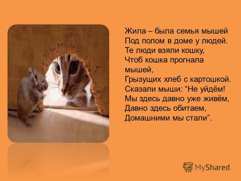 Жила – была семья мышей Под полом в доме у людей. Те люди взяли кошку, Чтоб кошка прогнала мышей, Грызущих хлеб с картошкой. Сказали мыши: Не уйдём! Мы здесь давно уже живём, Давно здесь обитаем, Домашними мы стали.