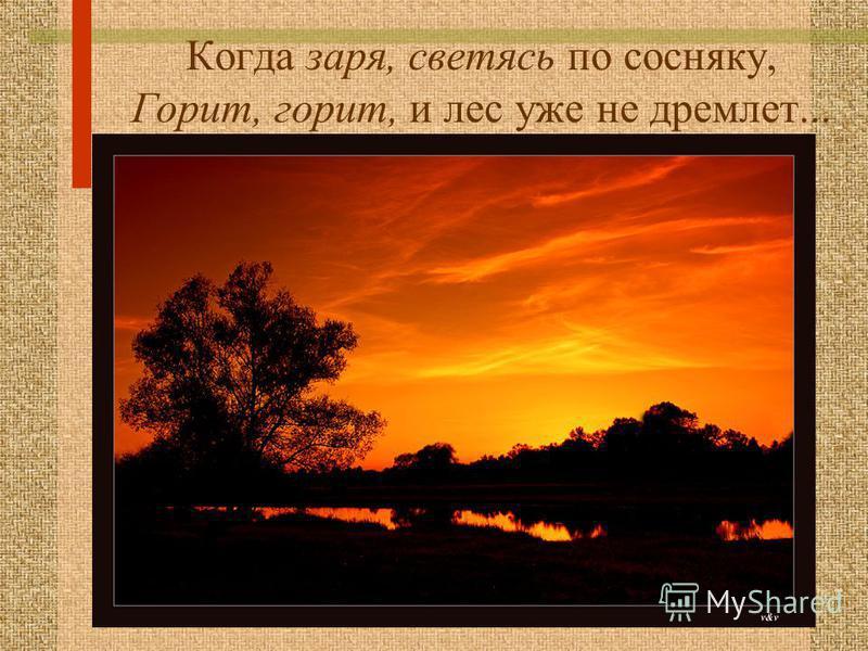 Когда заря, светясь по сосняку, Горит, горит, и лес уже не дремлет...