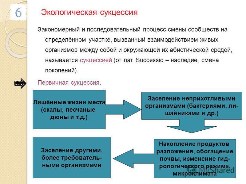 Экологическая сукцессия Закономерный и последовательный процесс смены сообществ на определённом участке, вызванный взаимодействием живых организмов между собой и окружающей их абиотической средой, называется сукцессией (от лат. Successio – наследие,