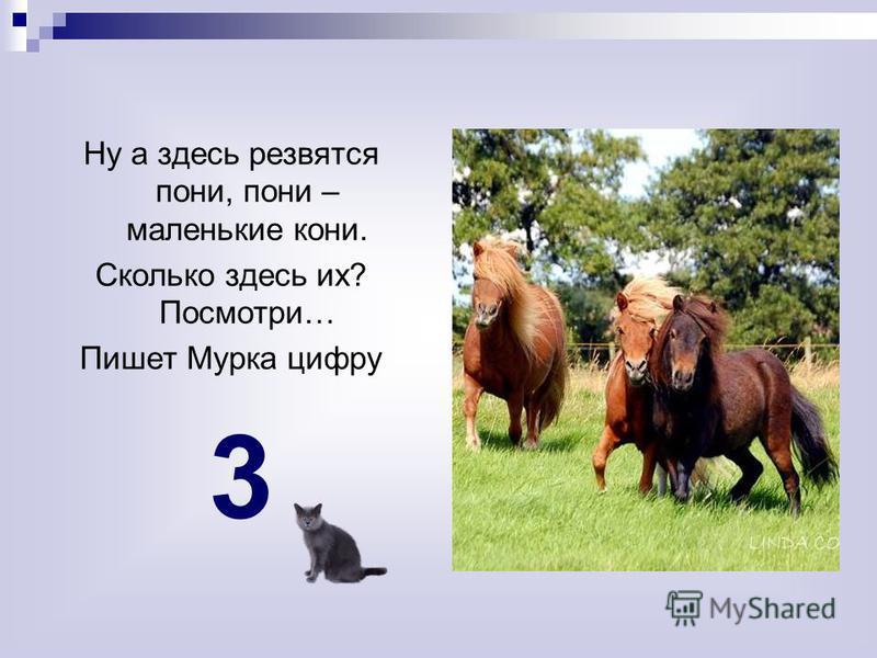 Ну а здесь резвятся пони, пони – маленькие кони. Сколько здесь их? Посмотри… Пишет Мурка цифру 3
