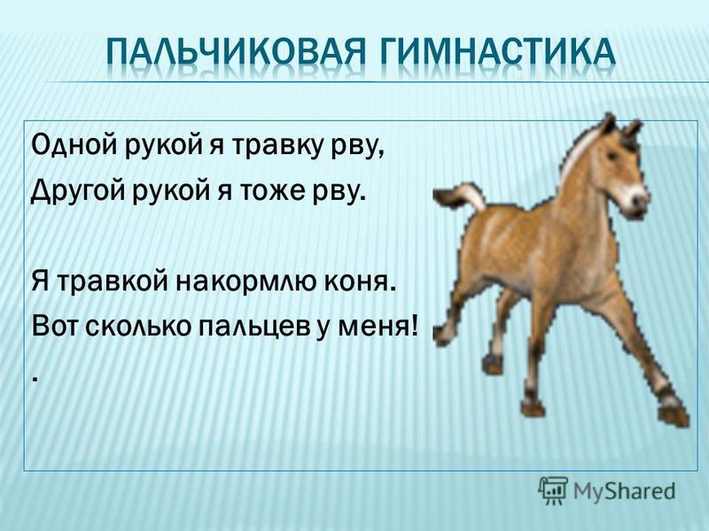 Одной рукой я травку рву, Другой рукой я тоже рву. Я травкой накормлю коня. Вот сколько пальцев у меня!.